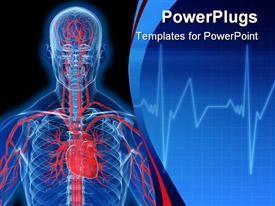PowerPoint template displaying visualization of human anatomy in blue with heart and veins in red