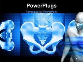 PowerPoint template displaying human pelvis in color background