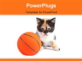 PowerPoint template displaying a cat with a basketball and white background
