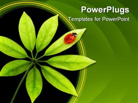 PowerPoint template displaying ladybug sitting on a green leaf