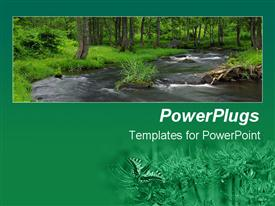 PowerPoint template displaying wild flower field in green background