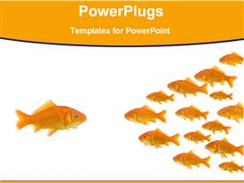 Fish in front of a group fish powerpoint theme