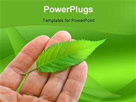 PowerPoint template displaying green fresh Leaf on hand on green background