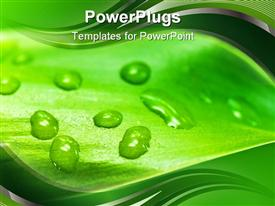 PowerPoint template displaying close up of green leaf with water droplets