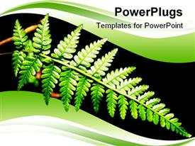 PowerPoint template displaying tropical forest leaf in amazing shape