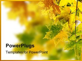 PowerPoint template displaying branch of maple leaves changing color beginning of fall