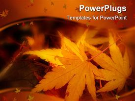 Collection of fallen leaves glowing in the early morning winter sun against a background of purpose powerpoint theme