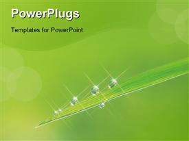 PowerPoint template displaying plant Depiction in the background.