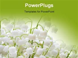Beautiful fresh lilies of the valley powerpoint design layout