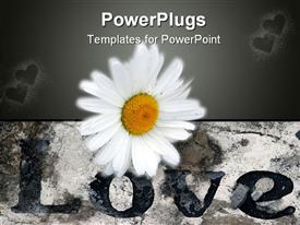 PowerPoint template displaying a beautiful flower with hearts in the background