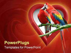 PowerPoint template displaying two parrots kissing in heart shape, red swirl background, love