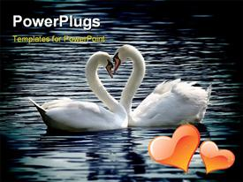 PowerPoint template displaying two lovely swans in river forming love shape