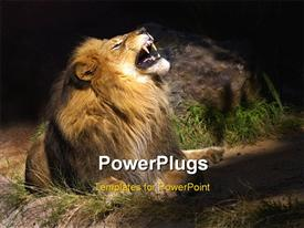 PowerPoint template displaying a lion roaring with a stone in the background