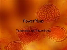 PowerPoint template displaying slices or a cell magnified under a microscope on an orange background