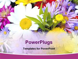 PowerPoint template displaying colorful flowers
