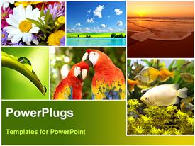 PowerPoint template displaying a depiction of nature in various forms like fish, birds and flowers