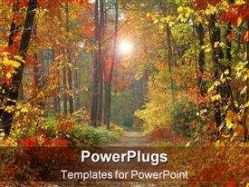 PowerPoint template displaying fall in forest in the background.