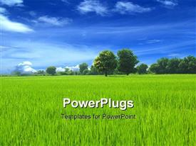 PowerPoint template displaying green grassed loan with clean blue sky in the background.