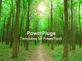 Green nature. foot path in forest on summer powerpoint template