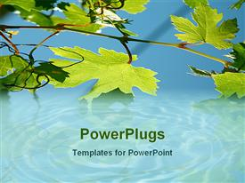 PowerPoint template displaying leaves reflecting on water in the background.