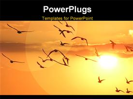 PowerPoint template displaying a lot of birds in the air and a sun in the background