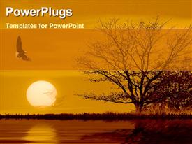 PowerPoint template displaying withered tree and Eagle with sunset over river surface
