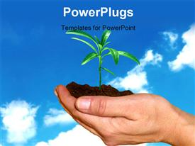 PowerPoint template displaying hands holding a small plant against blue sky in the background.