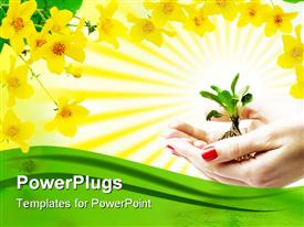 PowerPoint template displaying a pair of hands holding a plant