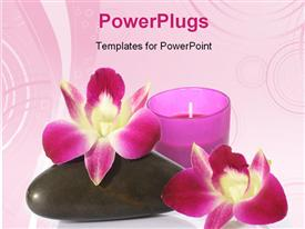 PowerPoint template displaying a cndle with two flowers and a zen stone
