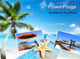 Palm and beach powerpoint design layout
