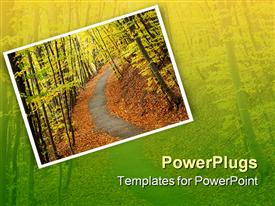 PowerPoint template displaying path going through an autumn forest with fallen leaves in the background.