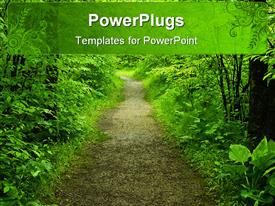 PowerPoint template displaying walking path in a green summer forest in the background.