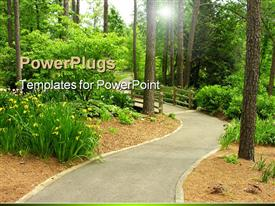 PowerPoint template displaying beautiful walkway with bridge in the middle of green forest