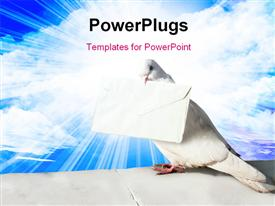 White Homing pigeon with letter on blue sky  - proposal powerpoint slides