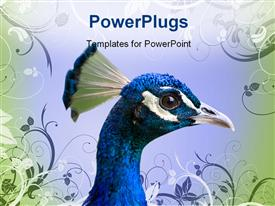 PowerPoint template displaying close-up of a colorful peacock head with vector floral texture