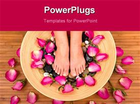 PowerPoint template displaying spa treatment with fresh beautiful roses
