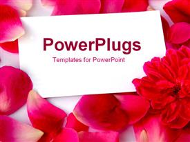PowerPoint template displaying fallen petals with a blank card in the background.