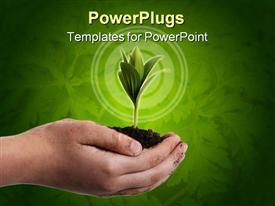 PowerPoint template displaying a beautiful green plant in a palm with green background