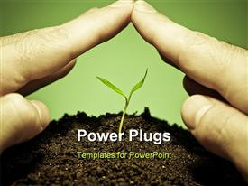 PowerPoint template displaying human hands protecting a new green seedling with green color