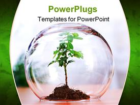 PowerPoint template displaying protected green plant inside a glass sphere in the background.