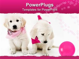 PowerPoint template displaying two cute puppies wearing bandanna's with a pink ball