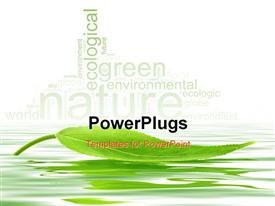 PowerPoint template displaying single green leaf floating over the water with nature keywords
