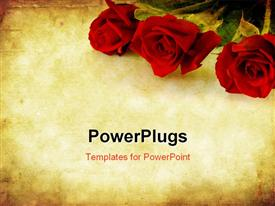 PowerPoint template displaying valentines Day background combining red roses with sandstone and paper grunge textures
