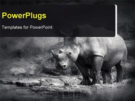 PowerPoint template displaying white Rhinoceros (Artistic processing)