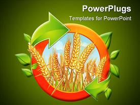 Circle with ripe yellow wheat ears with green arrows presentation background