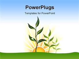 PowerPoint template displaying sunrise and field with plants in the background.