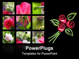 PowerPoint template displaying six tiles showing different parts and types of roses