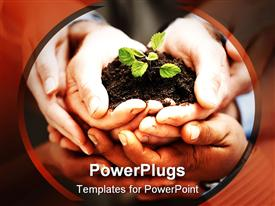PowerPoint template displaying close up of five hands holding handful of soil with small green seedling