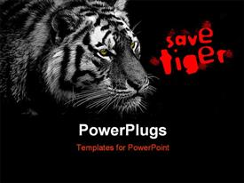 PowerPoint template displaying bW low key tiger with yellow eyes for even stronger expression in the background.