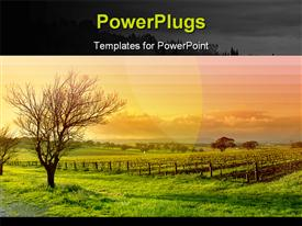 Sunrise scenery template for powerpoint